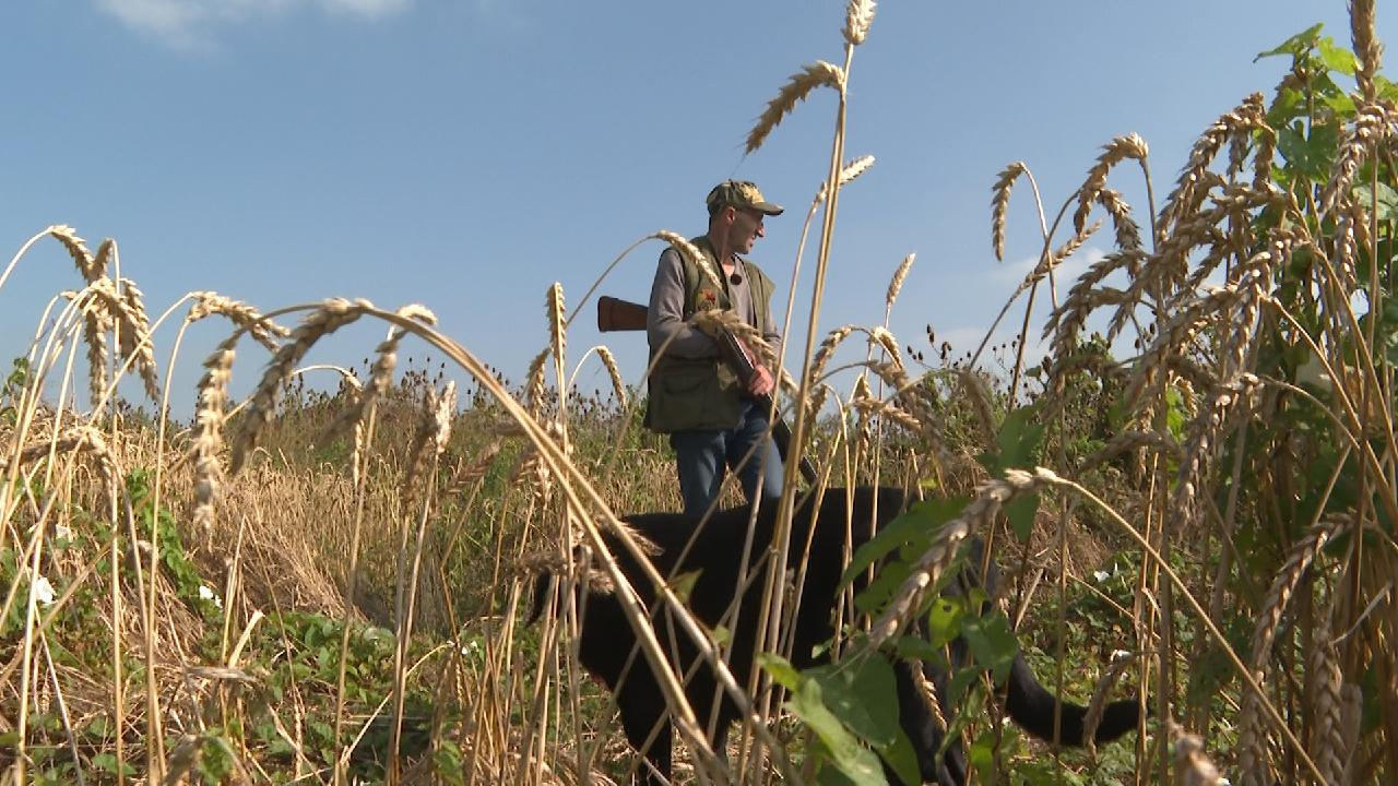 Hunters and conservationists team up to save the dwindling partridge population